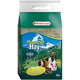 Mountin Hay Mint