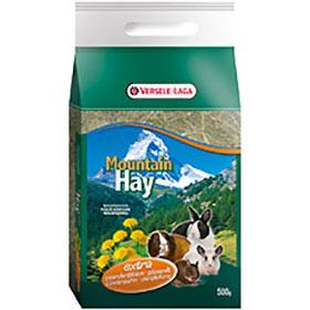 Mountin Hay Dandelion -maslačak