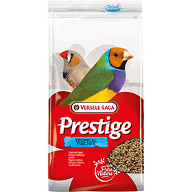 Prestige Tropical Finches