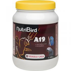 NutriBird A 19