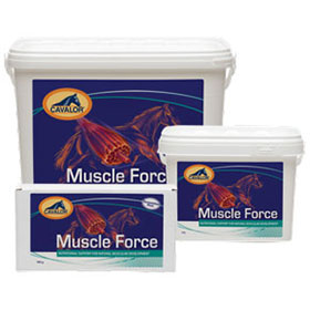 Muscle Force  6x15g